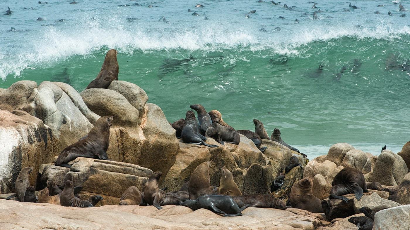 Küste von Namibia (c) Wilderness Safaris / Olwen Evans